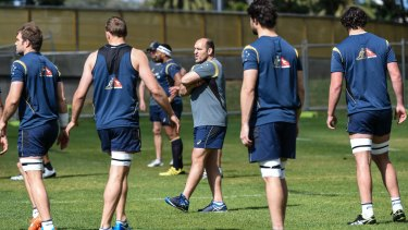 Doctoring the pack: Scrum coach Mario Ledesma works with his forwards in Sydney.