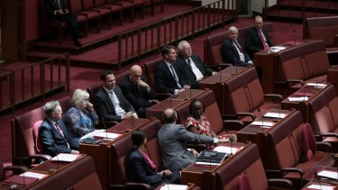 Senators voting against the Marriage Amendment Bill during the vote in the Senate on Wednesday.