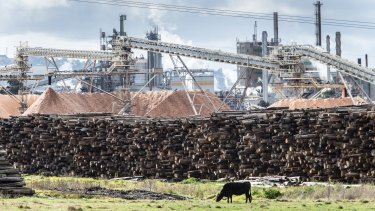 The Australian Paper facility in Morwell.