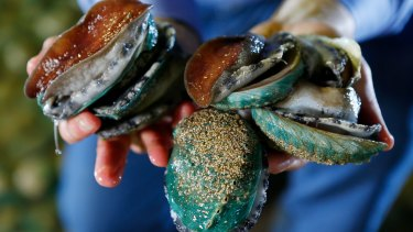 Poached abalone can be bought for about $55/kg in Victoria, whereas the commercial price is about $130/kg.