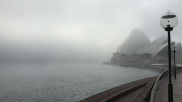 The Opera House hides in the early morning fog.