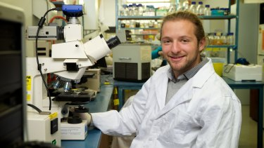 Brain wave: Nady Braidy wants to understand relationship between ageing and Alzheimer's.