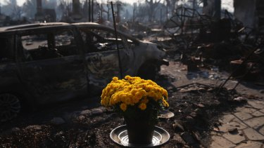 Fresh flowers are placed in Santa Rosa, California on Sunday.