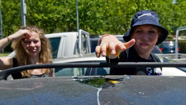 Michelle Cooper tries to cook an egg on the roof of Alison McGregor's car.