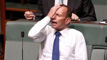 Tony Abbott sitting on the backbench in November.