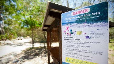 A dingo warning sign on Fraser Island.