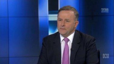 Anthony Albanese says no one is leader indefinitely, but he stands behind Bill Shorten.