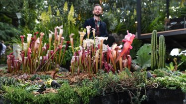 Anthony Sharples with the Anthropogenic Future display at The Garden show.