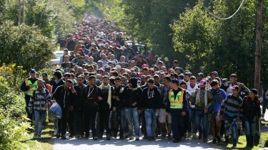 Hundreds of migrants walk into Austria from Hungary.