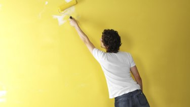 Industry figures suggest the number of unskilled painters in NSW has grown since painting licensing laws changed in 2015.