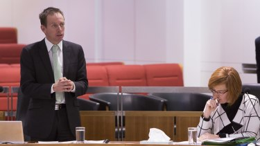 Greens MLA Shane Rattenbury said the Steven Freeman death has raised concerns about the coronial process.