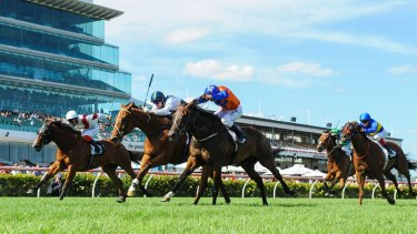 Family affair: Red Excitement wins the Chester Manifold Stakes.