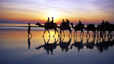 Camel trekking on Cable Beach neat Broome.