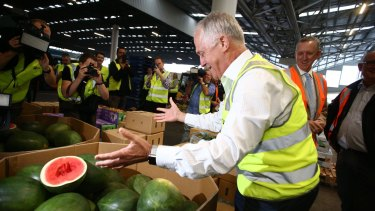 Prime Minister Malcolm Turnbull admires the watermelons at the Brisbane Markets on Monday.