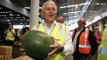 The Prime Minister examines a watermelon on his visit to the Brisbane Markets