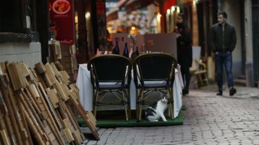 A cat sits under a restaurant chair on the Rue des Bouchers, normally a busy tourist area of Brussels, on Monday.