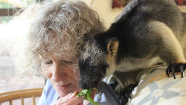 Margit shares a special bond with her tree kangaroo, Kimberley.