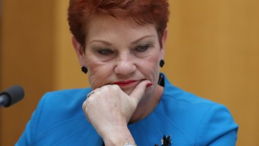 Pauline Hanson is the kingmaker in influencing the fate of the Australian media industry.