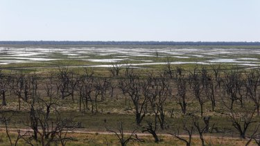 Broken Hill and the towns around Menindee Lakes are now relying on reverse osmosis to clean what is left of local water.