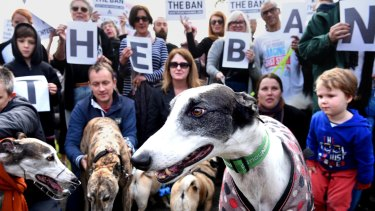 Supporters of a ban on greyhound racing at a park in Newtown on Sunday.
