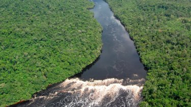 The climate-shaping Amazon region.