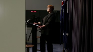Defence Minister Marise Payne during her press conference at Parliament House in Canberra.