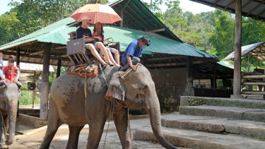 Elephant rides are at the top of the list of cruel attractions.