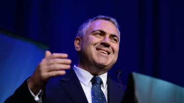 """Treasurer Joe Hockey has said the government's paid parental scheme scheme was only ever meant to be a """"safety net"""" for when businesses could not provide a payment."""