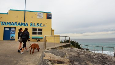 The path ahead will be getting warmer: Women walk a dog at Tamarama Beach.