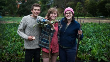 Paul Miragliotta, Emily Connors  and Em Herring (right) are thrilled to be taking part in the Pop-up Garlic Farmer – an initiative in which  people will be growing small garlic crops at different farms, including this one in Coburg.