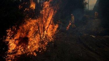 More than 20 crews are fighting bushfires near Rockhampton.
