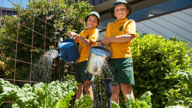Hawker Primary School kitchen garden students Joel Selmes and Nathan Brown water the produce.