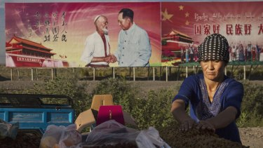 An ethnic Uighur woman arranges raisins for sale in Turpan County, Xinjiang. Behind her a billboard shows the late Communist Party leader Mao Zedong.