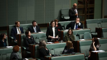Kearney giving her maiden speech.