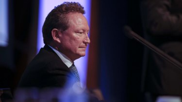 Andrew Forrest proposed a co-ordinated cap on Tuesday in response to the impact that excess supply from the pilbara was having on iron ore prices.