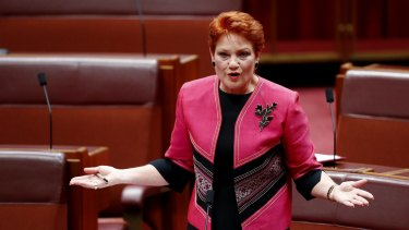 One Nation senator Pauline Hanson has taken credit for a review of the family law system.