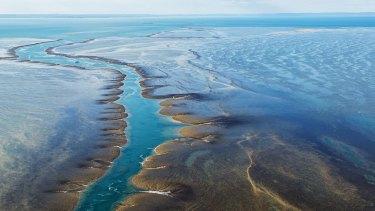 Aerial view of Montgomery Reef, Kimberley, Western Australia.
