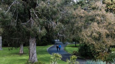 The Royal Botanic Gardens in Melbourne have received a major funding boost.