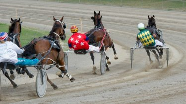 Persuader: A proposed ban on whips in harness racing has been put on hold.