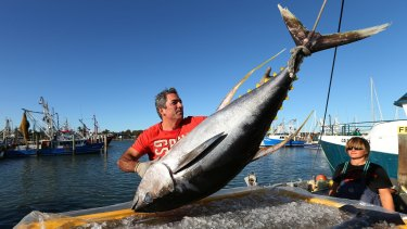 Pavo Walker, CEO of Walker Seafoods, unloading a fresh catch of line-caught yellow fin tuna.