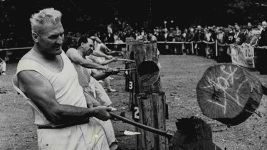 Senior Constable and axeman Jack O'Toole finishes his stroke during the first heat of the standing block chop in Hyde Park, 1968.