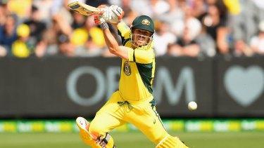 Power: David Warner has scored seven ODI hundreds this season.