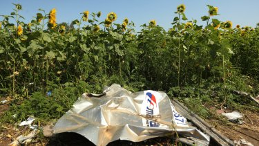 A piece of plane debris from MH17, which crashed over Donetsk, Ukraine.