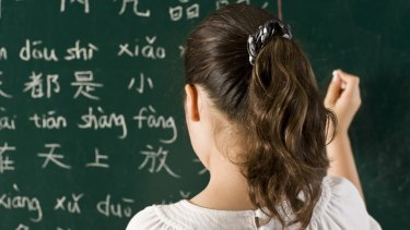Primary school students spend an average of less than an hour each week learning languages.