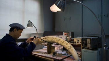 Xu Yongping, a Shanghai carver, works on an ivory tusk design called 'Dream of the Red Mansion' in 2013, which would take three years to complete.