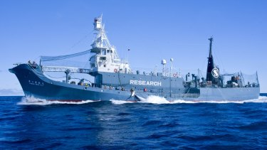 Japanese whaling harpoon ship the Yushin Maru 2  offloads a minke whale onto factory ship the Nisshin Maru in the Southern Ocean in 2013.