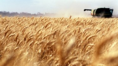 Glencore's next move could be in agriculture.