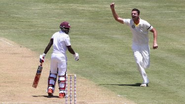 Fighting fit: Fast bowlers like Josh Hazlewood are standing up to the rigours of all forms of cricket better than ever.