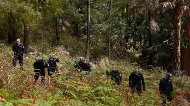 Police conducted a line search in the Royal National Park for the remains of Matthew Leveson in November.