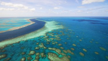 Greg Hunt said the reef was the best managed marine ecosystem in the world.